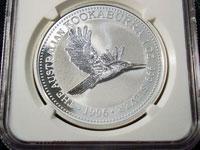 ワライカワセミ銀貨